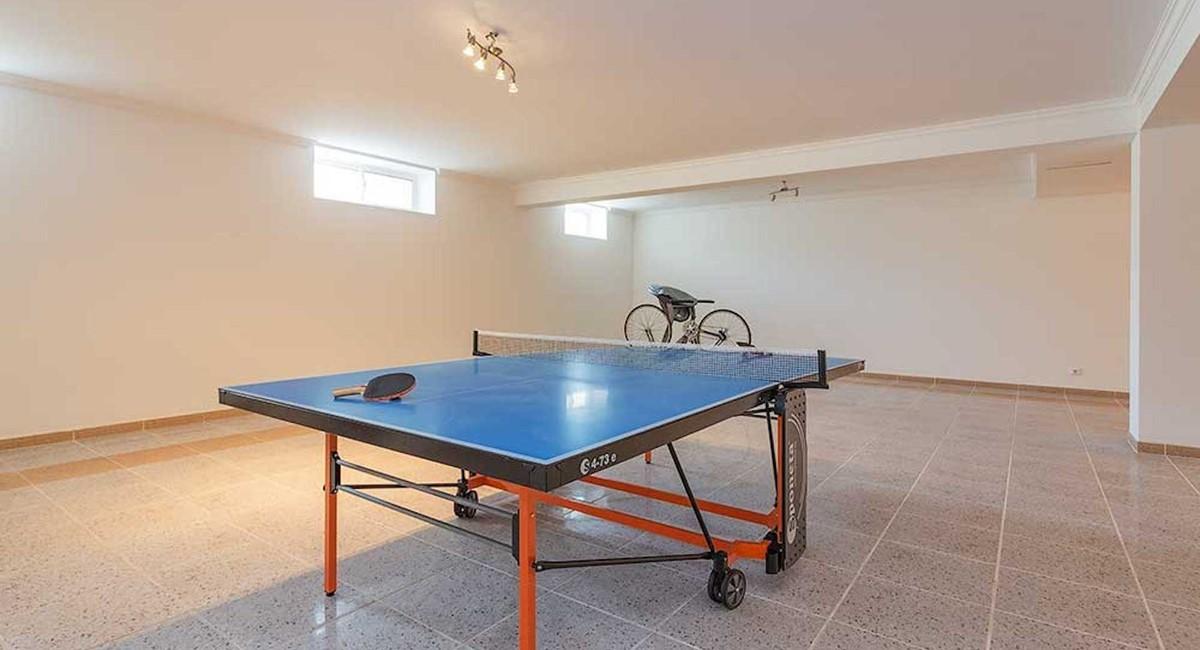Rlvbasement Games Room Tenis Table