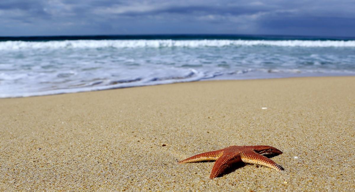 Casa Do Pego Beach3